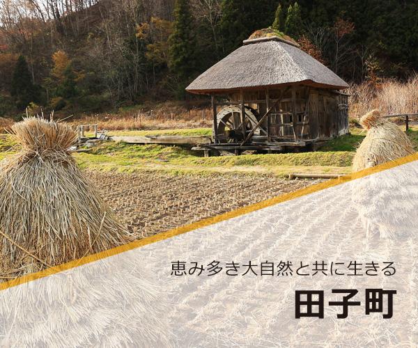 田子町について