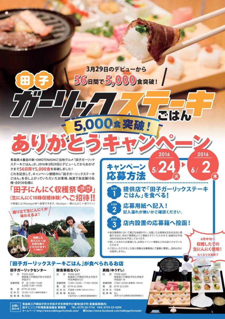 gariste_5000_flyer